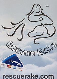 rescue rake